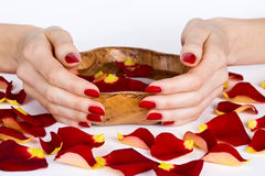 Red manicure and rose petals. Woman hands with red manicure during spa with rose petals holding a bowl stock image