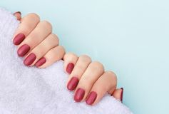 Red manicure on white towel, copy space stock image
