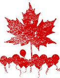Red maple leaf vector Royalty Free Stock Image