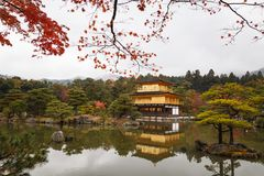 Kinkakuji temple, the goldern pavilion, Kyoto, Japan Stock Photos