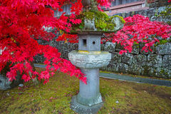 Red maple leaves at buddist temple in Nikko Royalty Free Stock Photo