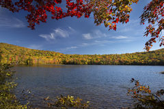 Red maple leaves frame Russell Pond, autumn in New Hampshire. Royalty Free Stock Photo