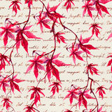 Red maple leaves with hand written text. Seamless pattern. Watercolor Royalty Free Stock Photo