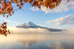 Red maple leaves  and Mt.Fuji  at Lake Kawakuchi. Red maple leaves ,color of Autumn  and Mt.Fuji with misty in the morning at Lake Kawakuchi Stock Images