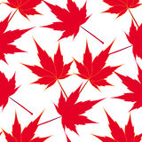 Red maple leaves. Seamless pattern. Japanese symbolism. illustration Royalty Free Stock Photos