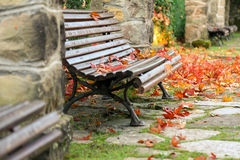 Red maple leaves on wooden bench Royalty Free Stock Photos