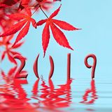 2019 red maple tree leaf greeting card. 2019, red maple tree leaf greeting card royalty free stock images