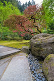 Red Maple Trees at Japanese Garden. Red Maple trees by big landscape rocks along stone path at Japanese Garden in Spring Stock Photo