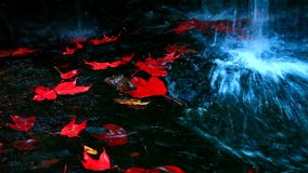 The red maples leaves and beautiful waterfall, HD 1080P Royalty Free Stock Photography