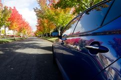 Red maples reflections in side panels of a blue sport car. In Seattle suburb, Redmond Royalty Free Stock Photo