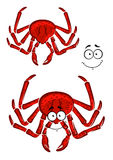 Red marine crab with a happy smile. And a second variation without face, for seafood ow wildlife themes Stock Photos