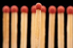 Red match standing in front of red wooden matches. Red match standing in front of defocused set of eight red wooden matches, isolated on black background Stock Photo