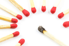Red match stick around burnt match stick isolated Stock Photography