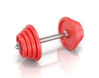 The red metal dumbbell Stock Photography