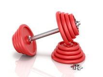The red metal dumbbell with pancake Royalty Free Stock Image