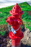 Red metal fire hydrant Stock Photography