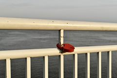 A red metal lock in the shape of a heart hangs on the slightly rusty white railing of the river embankment. A red metal lock, in the shape of a heart, hangs on royalty free stock photo