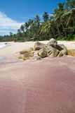 Red mineral sand Royalty Free Stock Image
