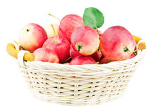 Red Mini Apples In Basket Stock Photography