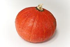 Red mini pumpkin. On white Stock Image