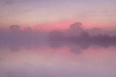 Red  misty sunrise over calm lake Royalty Free Stock Photography