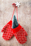 Red mittens gloves on christmas wooden background. Christmas gloves on the gift card wooden background Stock Photography