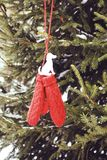 Red mittens with paper dog figure on fir tree branches. Red mittens with paper dog figure on fir tree green branches stock photography
