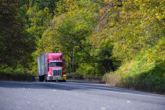 Red modern semi truck with trailer going up hill in autumn trees