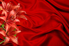 Red moist lily flowers  on a cool silk background Royalty Free Stock Photo