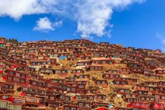 Red monastery at Larung gar Buddhist Academy in sunshine day and background is blue sky. Sichuan, China Stock Photography