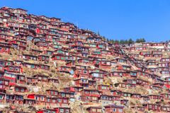 Red monastery at Larung gar Buddhist Academy in sunshine day and background is blue sky. Sichuan, China Stock Images