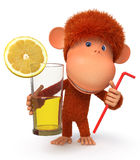 The red monkey with a cocktail Royalty Free Stock Image