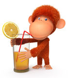 The red monkey with a cocktail Stock Images