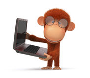 The red monkey with the laptop Stock Photos