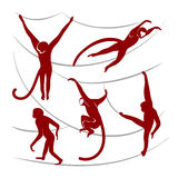 Red monkeys isolated silhouettes. Royalty Free Stock Photography