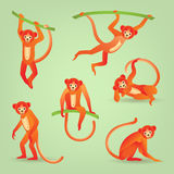 Red monkeys silhouettes. Monkeys on green background. Vector illustration. Symbols of 2016 Chinese New Year Royalty Free Stock Photo