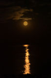 Red Moon royalty free stock photography