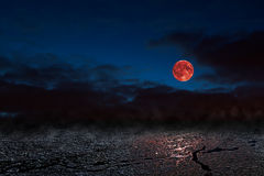 Red moon - bloodmoon Stock Image