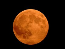 Red moon Royalty Free Stock Photo