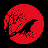 Red moon raven. Raven bird ominous design - black vector silhouette against red moon circle Stock Photos
