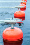 Red mooring buoys in a row floating on blue water Royalty Free Stock Image