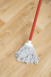 A red mop Royalty Free Stock Images