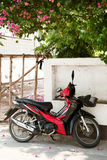 Red motorbike parked under a beautiful blossoming tree Royalty Free Stock Photo