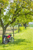 Red motorcycle under green trees Royalty Free Stock Photo
