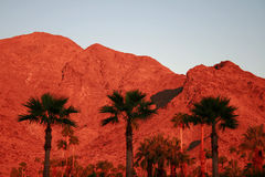 Red Mountains at dawn Stock Images
