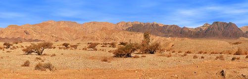 Red mountains in Timna park. Stock Image