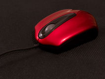 Free Red Mouse Stock Photography - 5037312