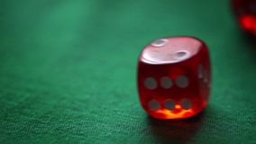 Red moving casino dices on green background stock video