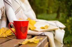 Red mug and book wrapped in a blanket on a bench. Red mug with a hot drink and book wrapped  in a blanket on, an outdoor bench in autumn Stock Photography