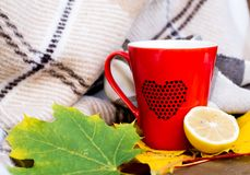 Red mug and lemon wrapped  in a blanket on a bench, leaves. Red mug with a hot drink and lemon wrapped  in a blanket on an outdoor bench in autumn with yellowed Royalty Free Stock Image